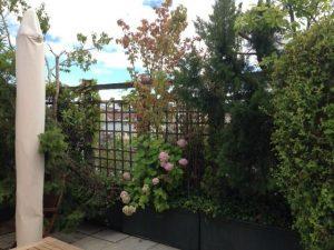 Dach und Terrasse